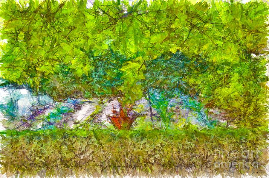 Pencil Digital Art - Vegetable Garden by Giuseppe Cocco