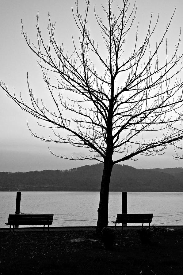 Lake Photograph - Waiting For The Sun by Richard Pierce