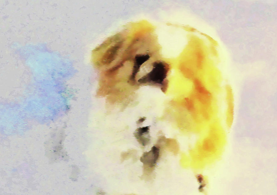Wasabi, dog painted. by Roger Bester
