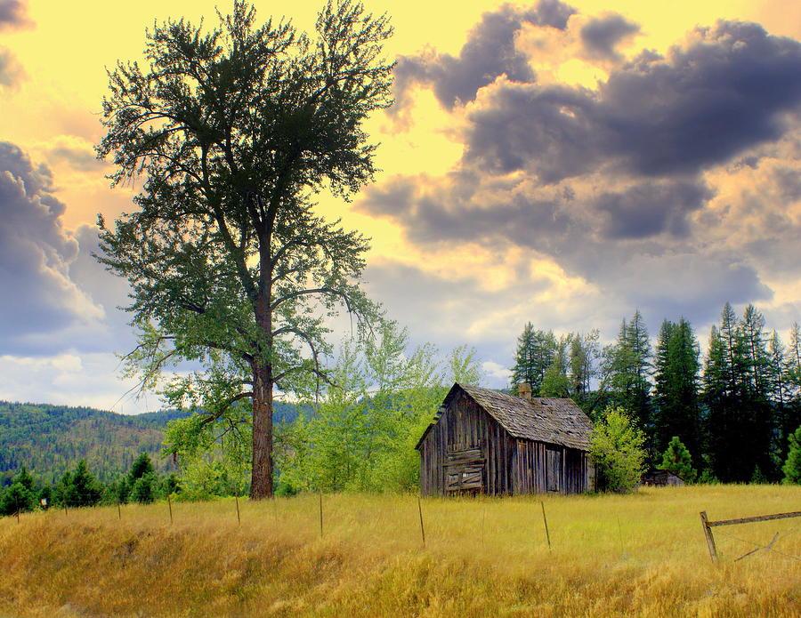 Washington Photograph - Washington Homestead by Marty Koch