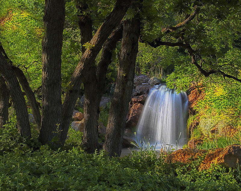 Waterfall And Oak Trees Photograph