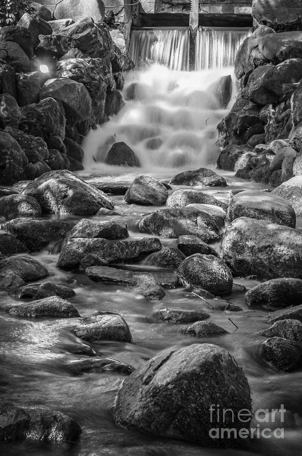 Waterfall In Gdansk Oliwa Park Bw Photograph