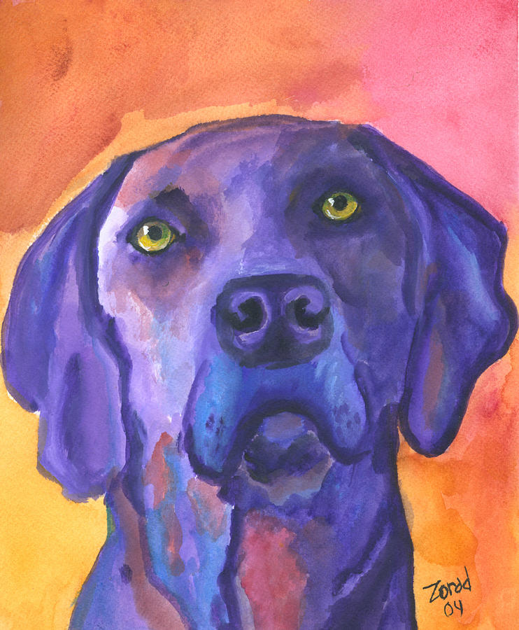 Weimaraner Dog Art by Mary Jo Zorad