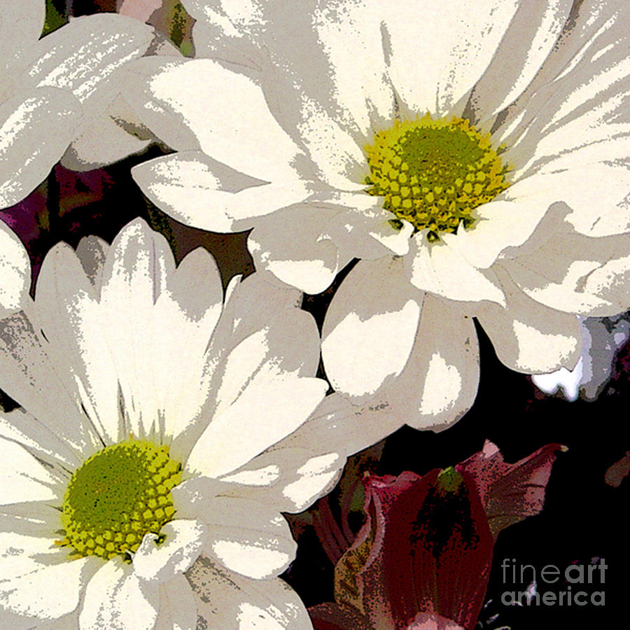 Floral Digital Art - White Daisies by Marsha Young