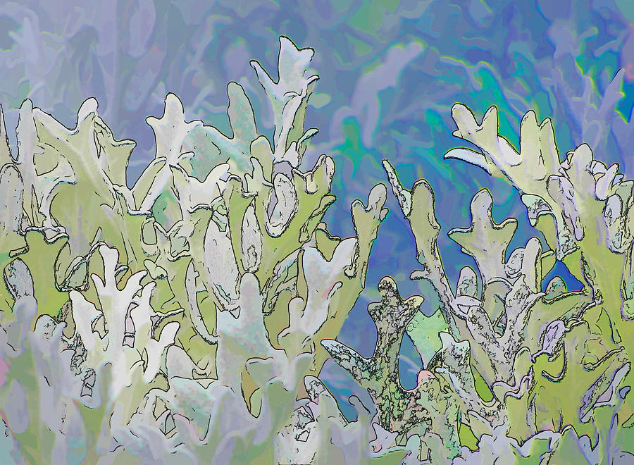 Flowers Photograph - White Forest 4 by Michael Taggart II