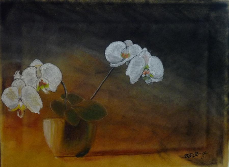White Orchids by Richard Le Page