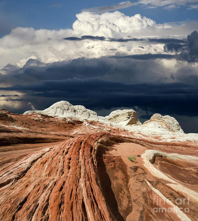 White Pocket Photograph - White Pocket Arizona 2 1 by Bob Christopher