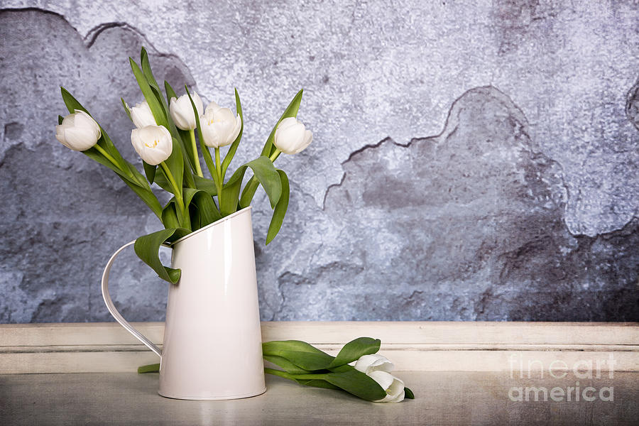 White Photograph - White Tulips by Jane Rix