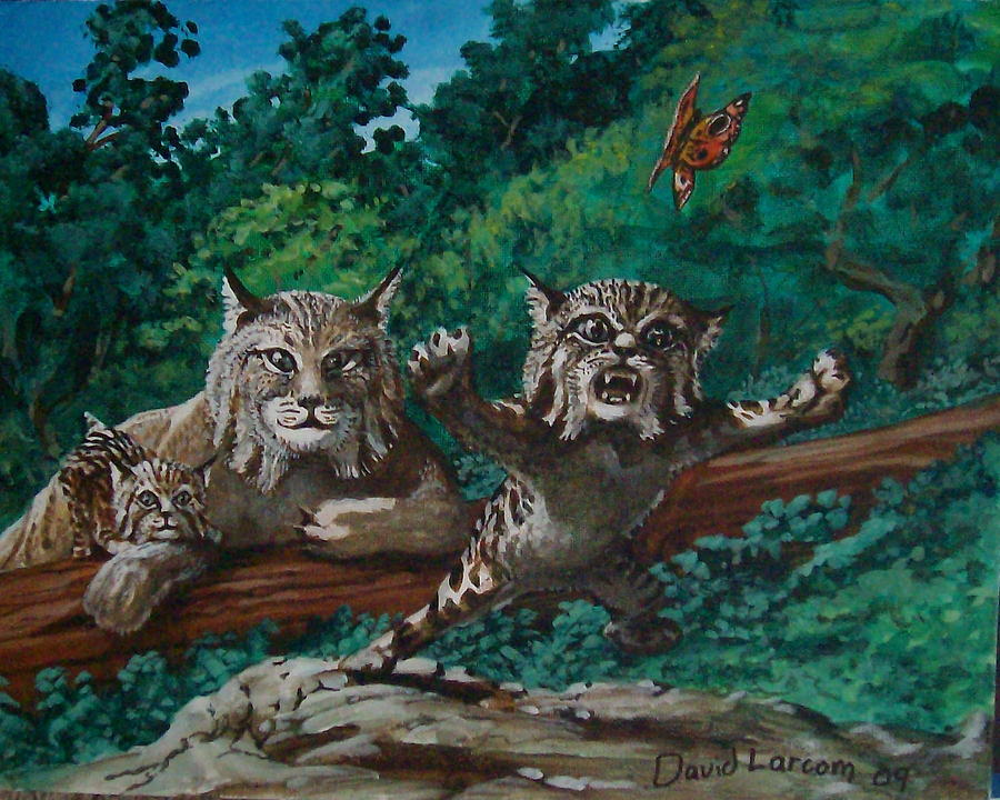 Bobcat Painting - Wild Bob by David  Larcom