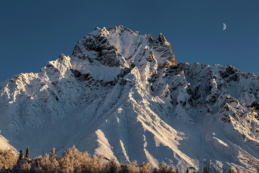 Williams Peak by Fred Denner