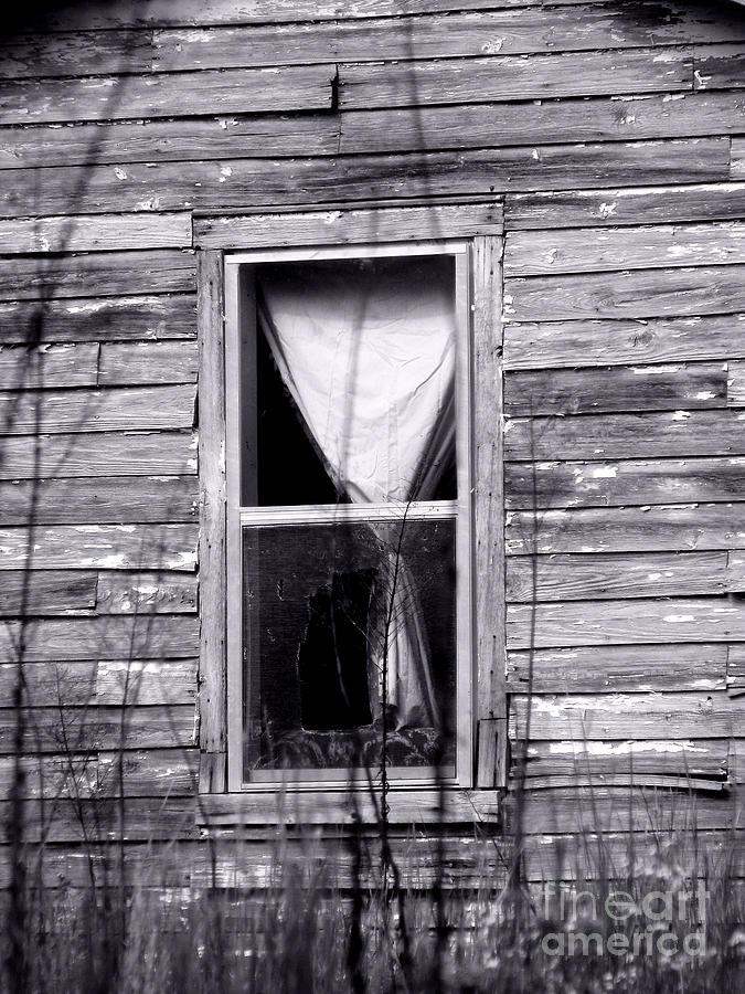 Windows Photograph - Window by Amanda Barcon