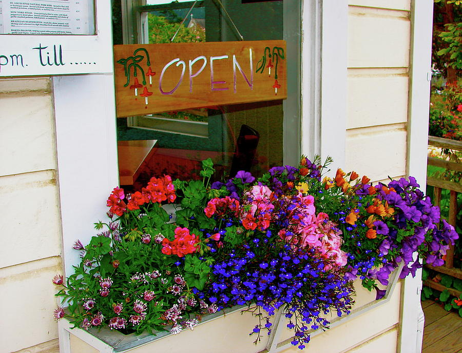 Flowers Photograph - Window View by Lisa Billingsley