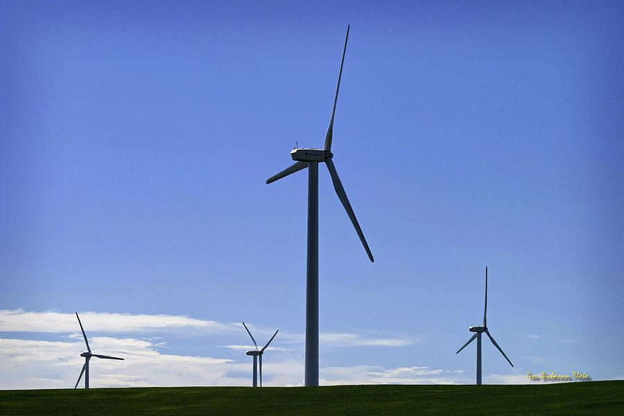 Wind Photograph - Windy Power by Tom Buchanan