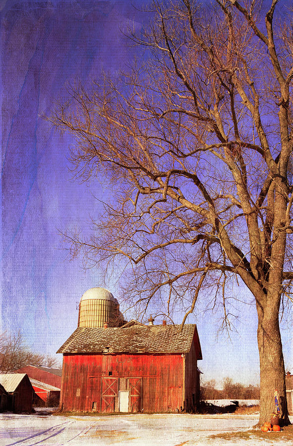 Winter Barn by Kathleen Scanlan