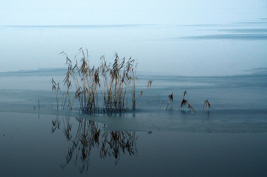 Winter Photograph - Winter Lake by Katarzyna Horwat