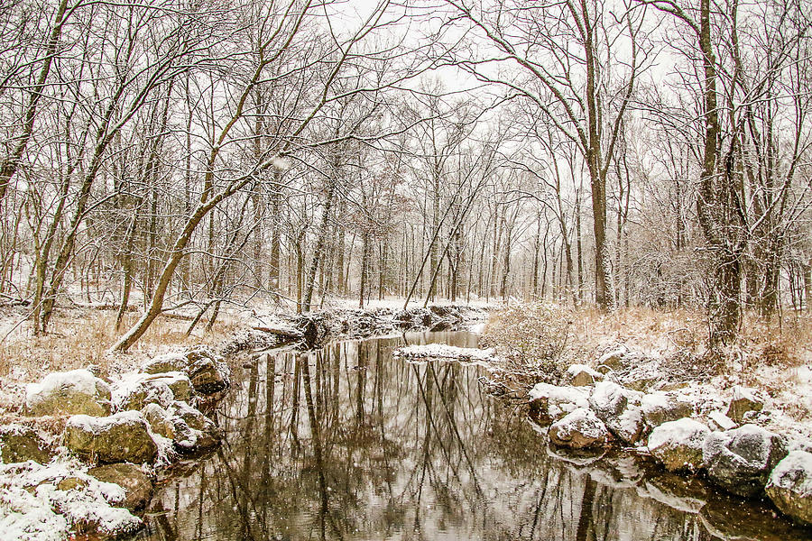 Snow Photograph - Winter Reflections by Susan Grove