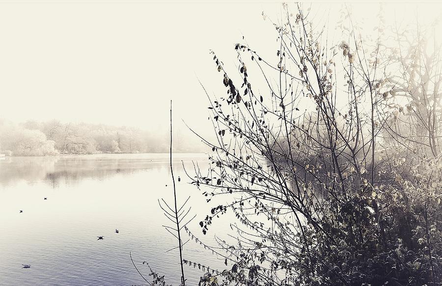 Landscape Photograph - Winters Morning At The Mote  1 by Stuart Ellesmere