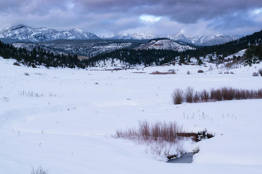 Pagosa Winter Pasture by Jason Coward