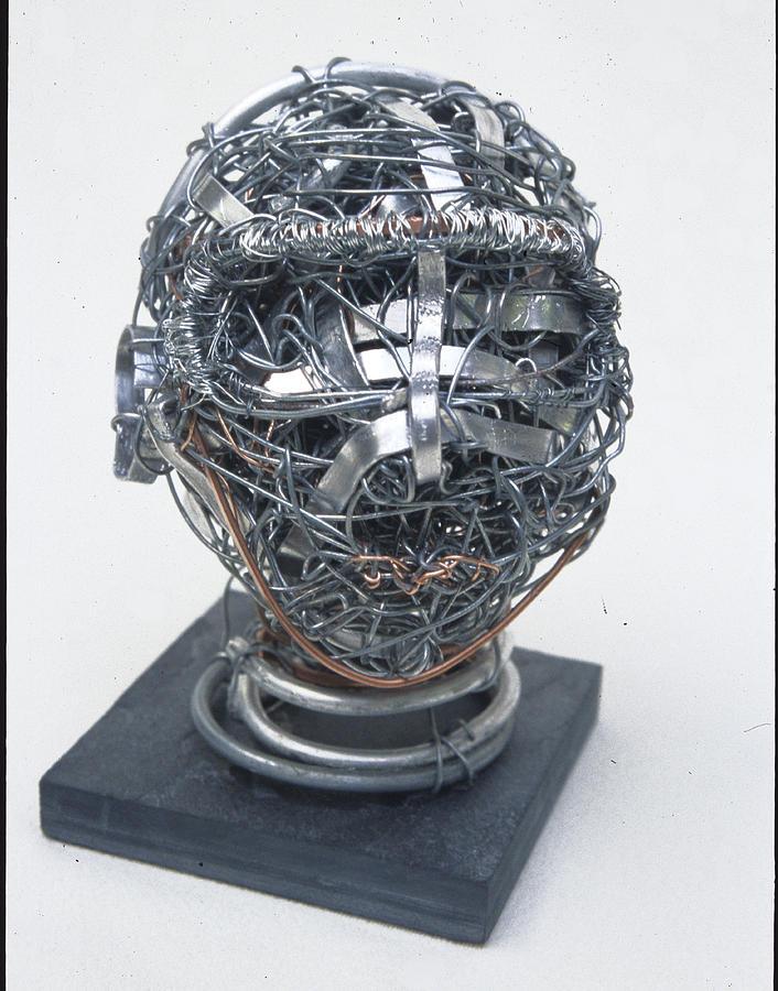 Sculpture Sculpture - Wire Head by Sara Allison