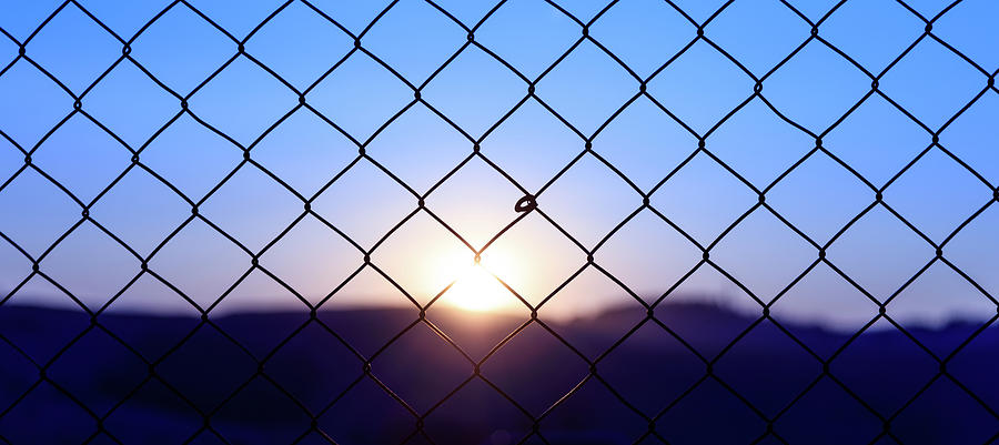 Fence Photograph - Wire Mesh Fence On A Sunset Background by George Tsartsianidis
