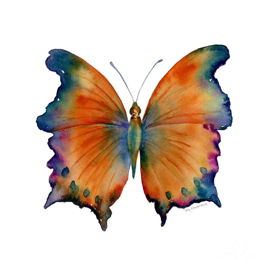 1 wizard butterfly painting by amy kirkpatrick