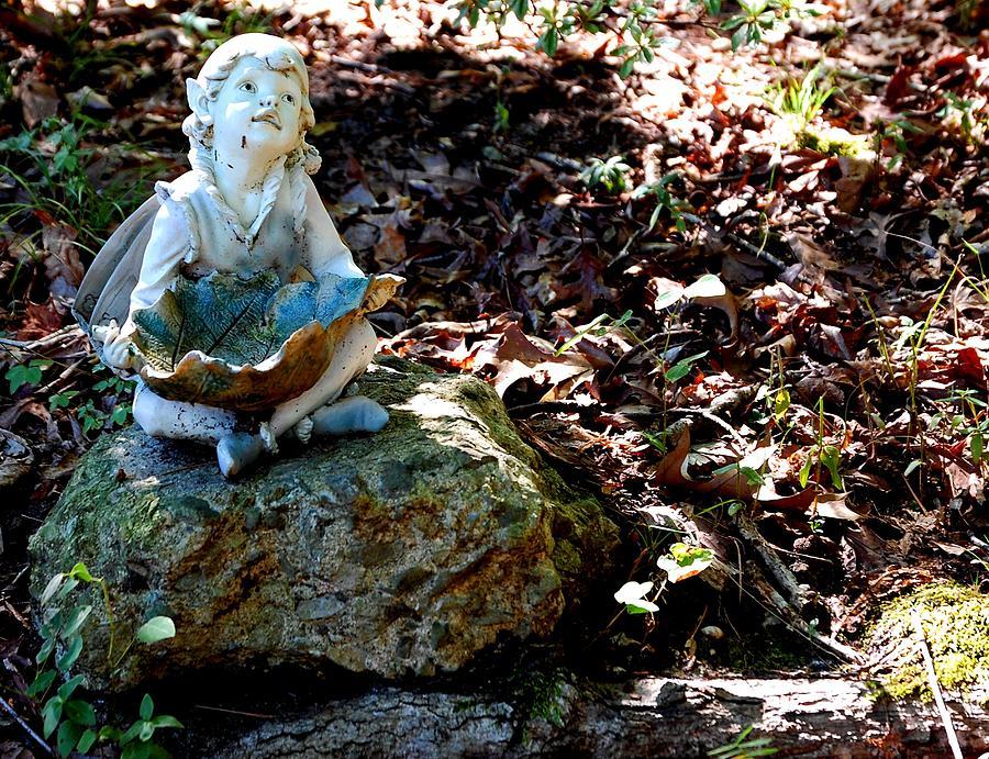 Woodland Fairy Photograph - Woodland Fairy by Sharon Blanchard
