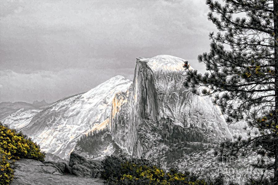 Yosemite Photograph - Yosemite Half Dome by Chuck Kuhn