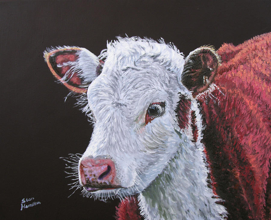 Calf Painting - Young Bull by Stan Hamilton