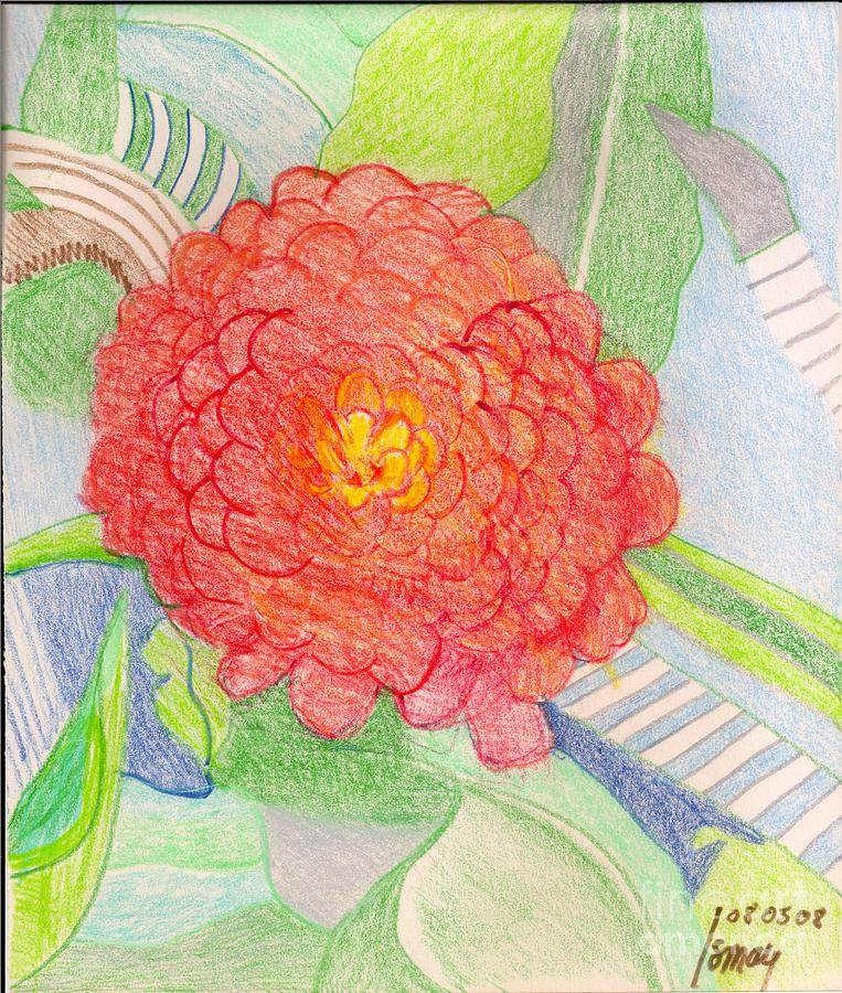 Zinnia  Drawing by Rod Ismay