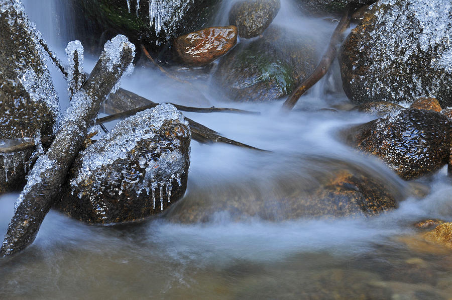 Creek Photograph - Creek by John Anderson