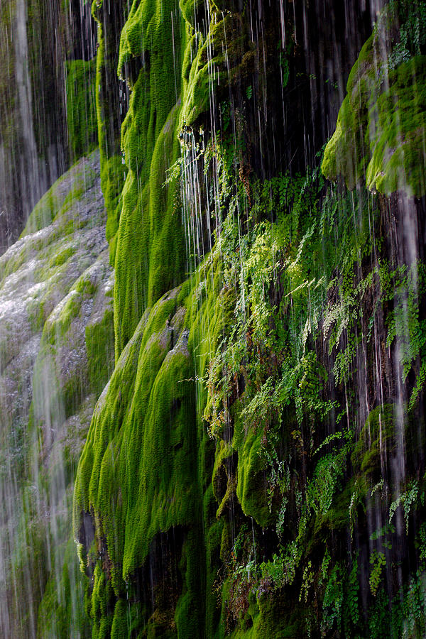 Water Photograph - Gormon Falls Colorado Bend State Park.  by James Smullins