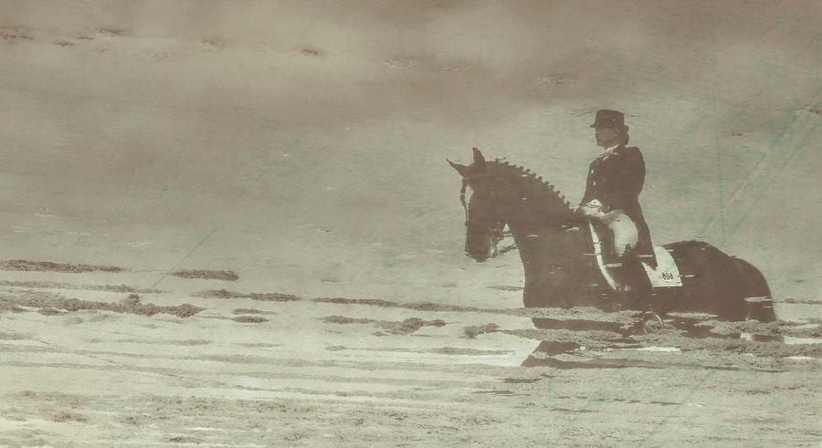 Horse Photograph - Reflection Reflected by JAMART Photography