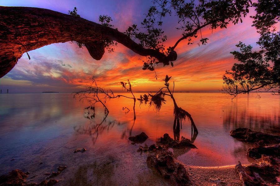 Sunset Digital Art - Sunset by Dorothy Binder