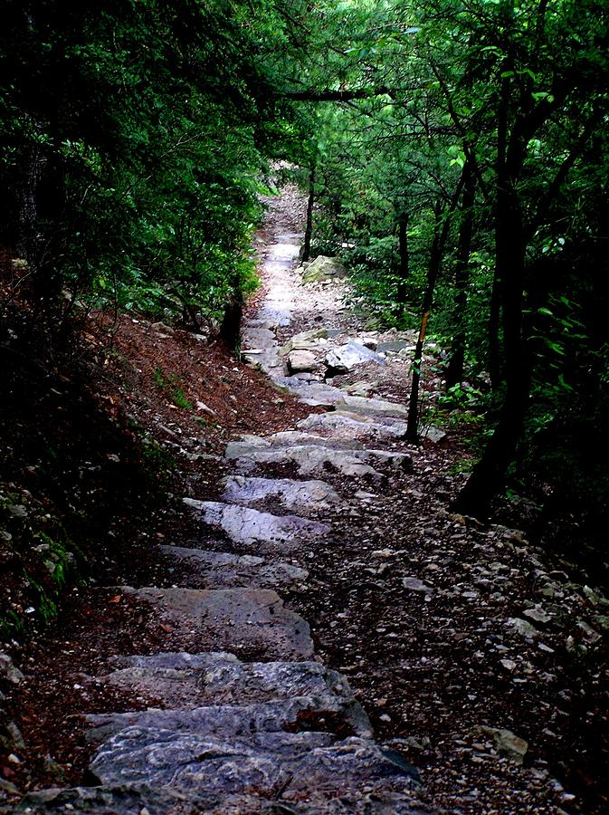 Steps Photograph - 1000 Steps In Mifflin Co Pa by Jeanette Oberholtzer
