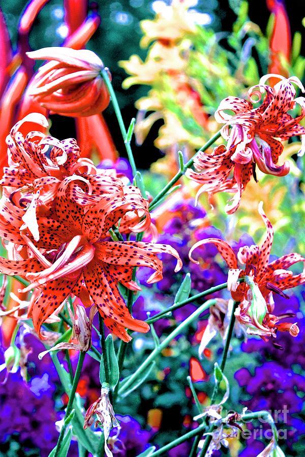 Atlanta Botanical Gardens Photograph - 10142017107 by Debbie L Foreman