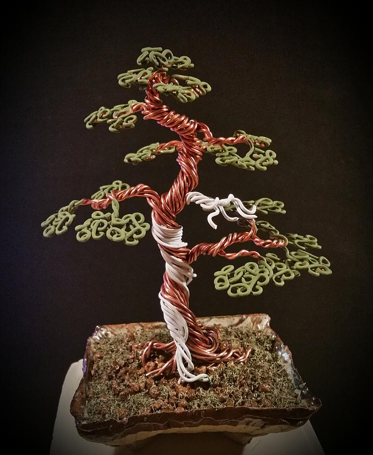 102 Traditional Bonsai Wire Tree Sculpture With Jin Photograph By Ricks Tree Art