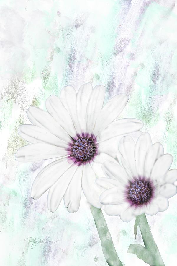 10856 White Cape Digital Art