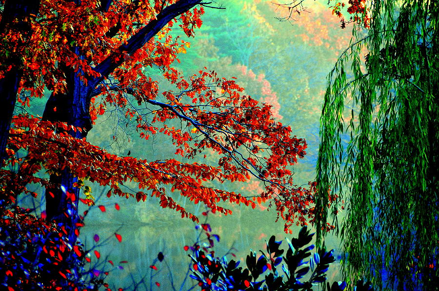 Lake View Digital Art - Autumn Colors by Aron Chervin