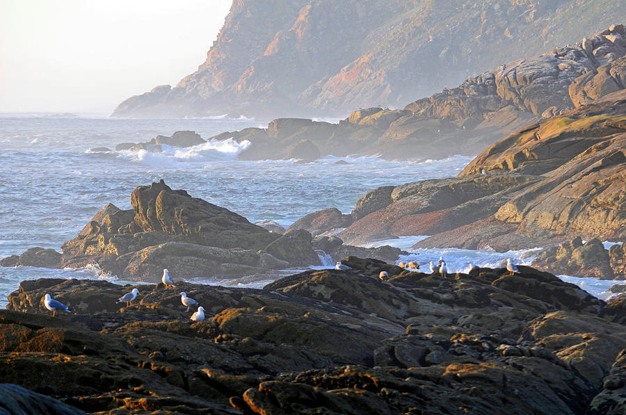 Travel Photograph - Cies Islands by Nano Calvo