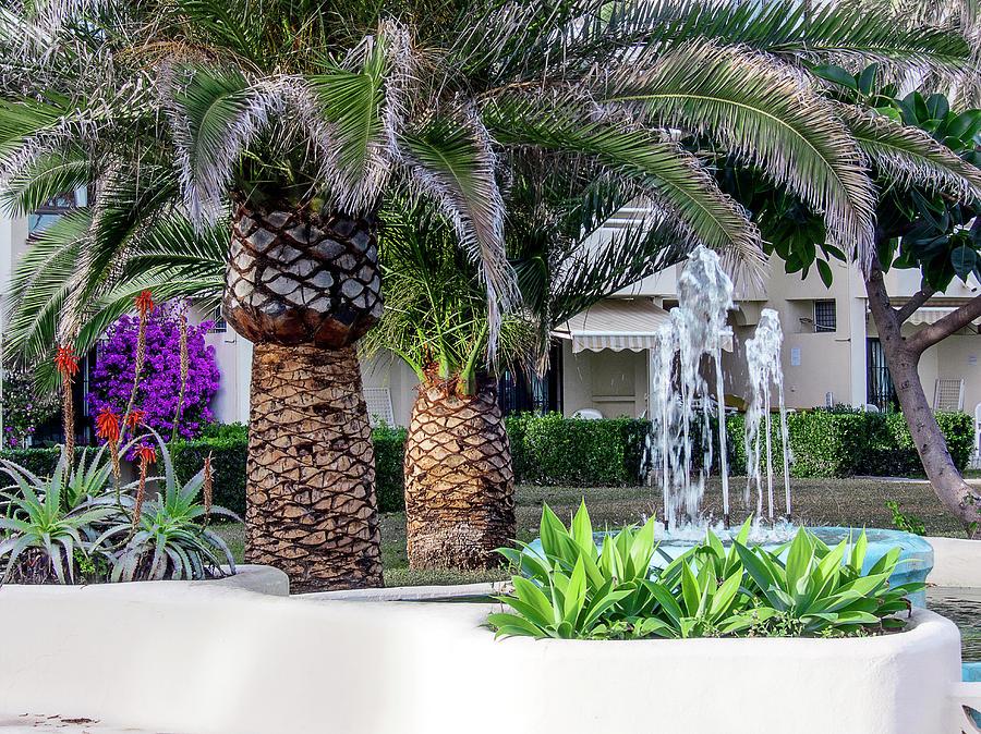 Bèl Ti Kaz! Beautiful part of life - Cocoyer | Home / Apartment