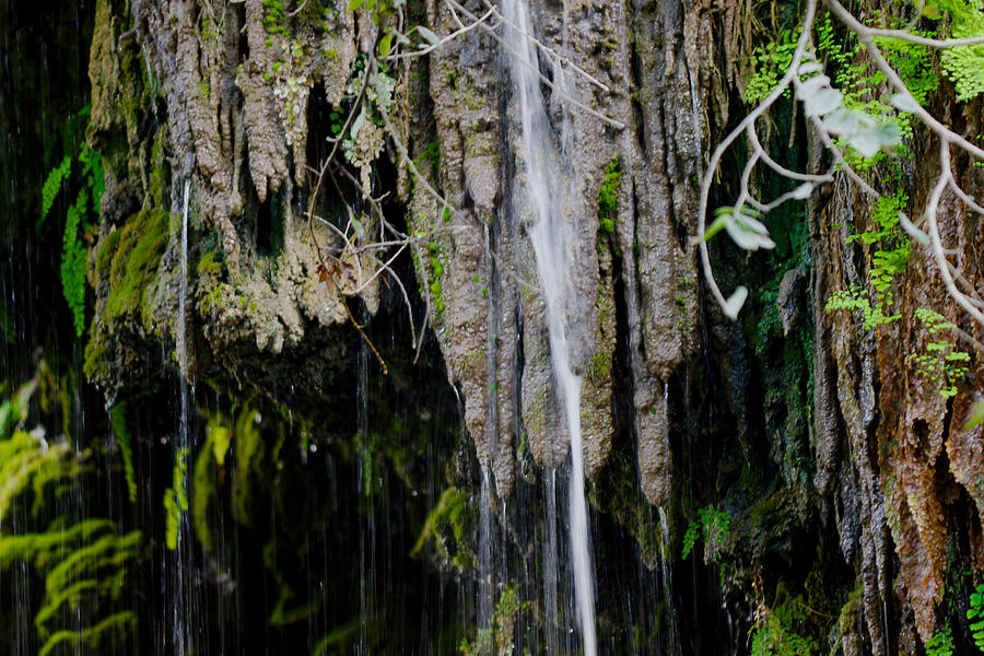 Stalactites Photograph - Gormon Falls Colorado Bend State Park.  by James Smullins