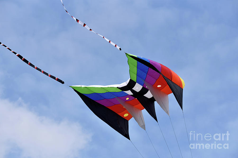 Artistic Photograph - Kite Flying During Kite Festival by George Atsametakis