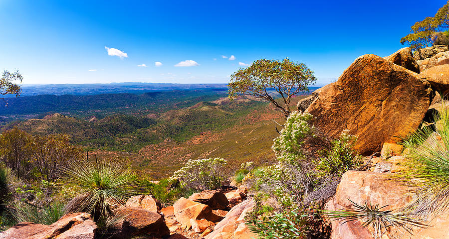 Wilpena Pound  Photograph by Bill  Robinson