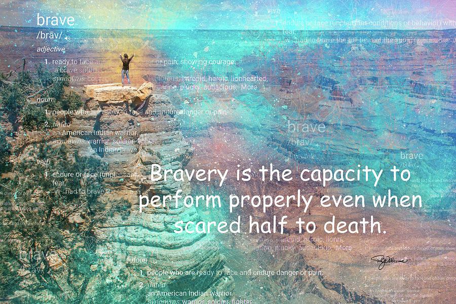 11051 Bravery Photograph