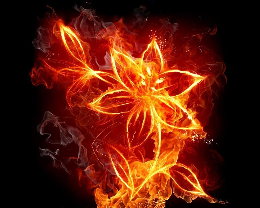 112775 Flowers Fire Digital Art by Mery Moon