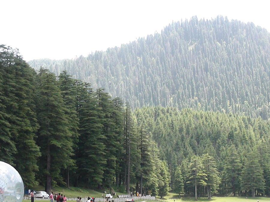 Beautiful Nature Scenery Photograph - Beautiful Nature Scenery by Lalitmohan Khungar