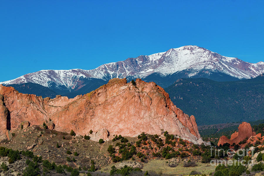 Garden Of The Gods And Pikes Peak Photograph