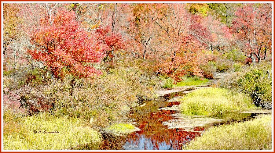 Color Photograph - Stream In Autumn, Pocono Mountains, Pennsylvania by A Gurmankin