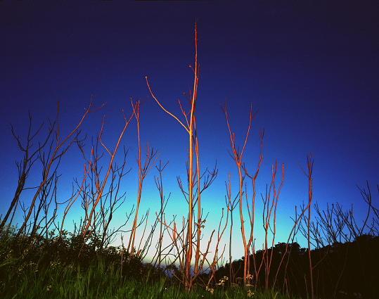 Landscape Photograph - Untitled  Series Night Landscape by Markus Redert