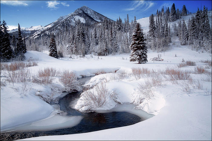 Wasatch Mountains In Winter Photograph